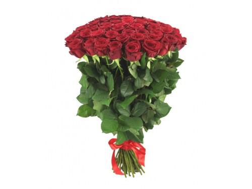 """Розы """"Ред Наоми"""""""