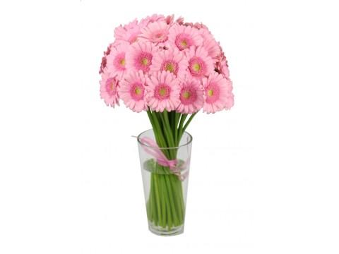 Герберы мини розовые, , 180 р., ger-mini, , Цветы