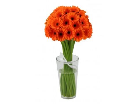Герберы мини оранжевые, , 180 р., Ger-mini, , Срезанные цветы