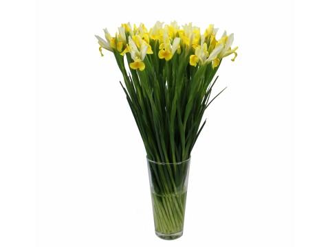 Ирисы желтые, , 200 р., Yellow irises, , Срезанные цветы