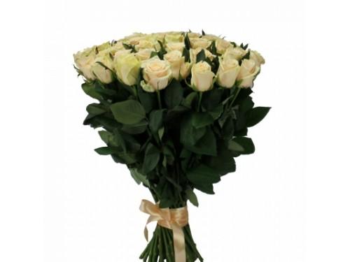 """Розы """"Талея"""""""
