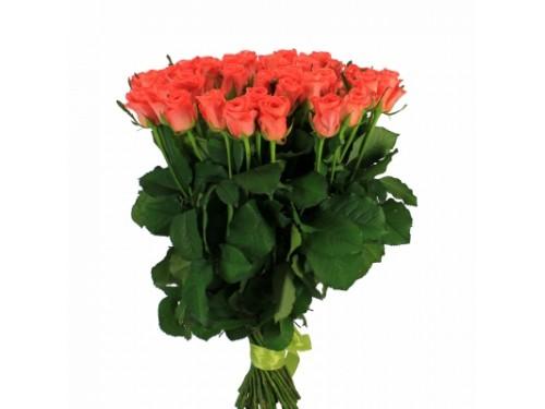"""Розы """"Вау"""""""