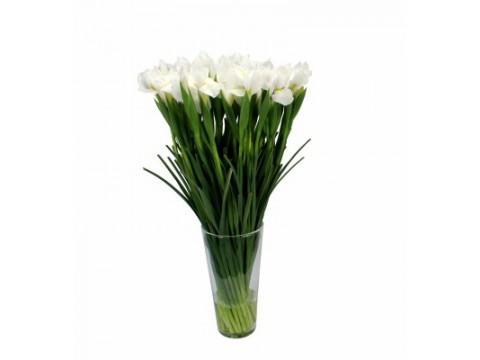 Ирисы белые, , 200 р., White irises, , Срезанные цветы